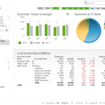 QlikView Executive Dashboard